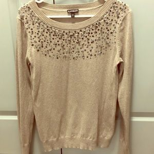 Express sequin embroidered sweater